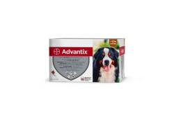 Advantix 100 1 ml 4-10 kg  BAY7  Hatóanyag: Imidakloprid 100 mg/ml, permetrin 500 mg/ml  Célállat faj: kutya  Javallat: Rácsepegtető oldat. Kutya bolhásság (Ctenocephalides felis, Ctenocephalides canis) kezelésére és megelőzésére. A kutyán élősködő bolhák a kezelést követő egy napon belül elpusztulnak. Egy kezelés 4 hétig véd az újrafertőződés ellen. A készítmény felhasználható a bolhacsípés okozta allergiás bőrgyulladás (FAD) kezelési programjának részeként. Szőrtetvesség (Trichodectes canis) gyógykezelésére. A termék négy héten át fennmaradó akaricid és repellens hatással rendelkezik Rhipicephalus sanguineus, Ixodes ricinus kullancsok, és három hétig tartó aktivitással rendelkezik Dermacentor reticulatus kullancsfaj esetén. A kezelés időpontjában a kutyán lévő kullancsok a kezelés után még két napig is életben maradhatnak, láthatóak maradnak a kutya bőrébe fúródva  Adagolás: az állat testtömegének megfelelő hatáserősségű pipetta tartalmát csorgassa az állat bőrére, nyakra, a gerinc vonalában  Kiszerelés: 4x
