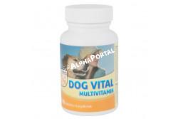 :Dog Vital Multivitamin Tabletta 60db  DV3246  A DOG VITAL MULTIVITAMIN tabletta a nagyszámú, életfontosságú és magas biológiai értékű alkotórészével alkalmas kedvenceink optimális vitamin- és ásványianyag- (makro- és mikroelem) szükségletének kielégítéséhez. A megfelelő ellátás nélkülözhetetlen a fiatal állatok egészséges fejlődéséhez, valamennyi korban az általános ellenálló képesség fenntartásához, munkakutyák terhelhetőségéhez, a vemhesség és szoptatás alatt megnövekedett vitamin- és mikroelem-szükséglet fedezéséhez, valamint a betegségek megelőzéséhez, vagy lefolyásuk enyhítéséhez és a felépülés gyorsításához. ADAGOLÁS, ALKALMAZÁS: A DOG VITAL MULTIVITAMIN tablettát kúraszerűen adagoljuk. Az általános adagja napi 1 tabletta 10 testtömeg kilogrammonként (ttkg). A kutyák a tablettákat általában szívesen fogyasztják, de szükség esetén összetörve napi táplálékukba is bekeverhető. Vemhes és szoptató szukáknak 1 tabletta/7 ttkg /nap. Kölyökkutyáknak 0,5-1 tabletta /nap Kistestű fajtáknak (10 kg –ig) 0,5-1 tabletta /nap  Közepes méretű fajtáknak (10-30 kg) 1-3 tabletta /nap Nagytestű fajtáknak (30 kg felett) 3-6 tabletta /nap