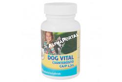 :Dog Vital Csonterősítő Ca/P 1,3:1 60db  DV3284  A DOG VITAL 1:1,3 CSONTERŐSÍTŐ tabletta ásványi anyagokat és vitaminokat tartalmazó táplálék kiegészítő kutyák részére. Az optimalizált összetételű, ízesített tabletták jól értékesülő kalciumot, foszfort és D3-vitamint valamint más mikro- és makroelemeket, vitaminokat tartalmaznak. Adagolása segíti a kutyák egészséges csont- és fogfejlődését, alkalmas a hiányos ásványianyag- és vitaminbevitel, vagy a megnövekedett szükséglet fedezésére. Javallat: A készítmény segíti az egészséges csont- és fogfejlődést, növeli a fogak és a csontok szilárdságát, segíti a vemhesség és a szoptatás alatt a megnövekedett ásványianyag-szükséglet fedezését, a kalcium- és foszforhiányból eredő anyagforgalmi zavarok megelőzését. ADAGOLÁS, ALKALMAZÁS:  a DOG VITAL CSONTERŐSÍTŐ tabletta általános adagja naponta 1 tabletta 10 testtömeg kg-onként. Vemhes szukáknak 1 tabletta/ 7 ttkg/ nap, szoptató szukának 1 tabletta/ 5 ttkg/ nap, kölyökkutyák fajtától függően 0,5-1 tabletta/ nap az ajánlott adagja.  Javasolt a DOG VITAL CSONTERŐSÍTŐ tablettát a növekedés során folyamatosan adagolni. A kutyák a tablettákat általában szívesen fogyasztják, de szükség esetén összetörve, a napi táplálékukba is belekeverhető. Adagoláskor biztosítsunk friss vizet az állat számára.