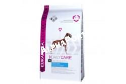 -Eukanuba Daily Care Sensitive Joints 2,5kg  EUKDC08  Eukanuba Daily Care Sensitive Joints   100%-ig teljes értékű táp az érzékeny ízületekkel rendelkező felnőtt kutyáknak  A gondtalan mozgás a jó egészség jele, de számos kutya esetében az érzékeny ízületek és a túlsúly csökkenti  az aktivitás szintjét. A speciális Eukanuba Sensitive Joints tápok elősegítik, hogy a kutya jó kondícióban  maradjon és érezze az aktív élet örömeit Az optimális eredmény érdekében ezt az étrendet naponta,  kizárólagosan kell adagolni.  Nem tartalmaz hozzáadott színező, ízesítő, tartósítószereket. Összetétel: Szárított csirke és pulyka 22%, kukorica, búza, cirok, állati eredetű zsír, árpa, szárított cukorrépapép 3,8%, hidrolizált állati fehérjék, szárított egész tojás, káliumklorid, kalcium-karbonát, halolaj, nátrium-klorid, lenmag, nátrium-hexametafoszfát, frukto-oligoszacharidok 0,38%, szárított sörélesztő, glükozamin 576mg/kg, kondroitinszulfát 57mg/kg). Analitikai összetevők: Fehérje 23%, zsírtartalom 13%, Omega-6 zsírsavak 2,20%, Omega-3 zsírsavak 0,36%, nyershamu 6,80%, nyersrost 2,60%, kálcium 1,10%, foszfor 0,90% Adalékanyagok:  Vitaminok: A-vitamin:45408IU/kg, D-vitamin: 1507IU/kg, E-vitamin: 252mg/kg, L-karnitin: 48mg/kg,béta-karotin:28mg/kg.  Nyomelemek:  Réz-szulfát pentahidrát: 48mg/kg,  Kálium-jodid: 3,5mg/kg,  Vas-szulfát monohidrát: 643mg/kg,  Mangán-szulfát-monohidrát:49mg/kg,Mangán-oxid:35mg/kg,,Cink-oxid: 223mg/kg,  Nátrium-szelenit: 0,25mg/kg. Amikor első alkalommal ad Eukanuba tápot, fokozatosan, 4 nap alatt vezesse be kutyája étrendjébe. Azt javasoljuk, hogy kutyáját naponta kétszer etesse. Ossza fel az etetési útmutató szerinti napi adagot az egyes étkezésekhez. Kutyája étvágya ettől eltérhet a korától, vérmérsékletétől és aktivitási szintjétől függően. A kutya előtt mindig legyen bőséges friss ivóvíz.  Nettó tömeg: 2,5 kg, 12,5 kg-os Tárolás: Száraz, huvös helyen tartandó!