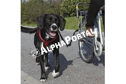 .Bicikli Szett Nagy Testű Kutyának  TRX1287  Kiegészítő felszerelés házi kedvencek részére. Anyaga: az állat szempontjából biztonságos anyagból készült (gumi, műanyag, fa, fém vagy nylon). Ne hagyja kedvencét felügyelet nélkül a felszereléssel!