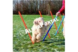 .Játék Dog Activity Agility Szlalom 12db 115x3cm Kék/Narancs  TRX3206  Játék házi kedvencek részére. Anyaga: az állat szempontjából biztonságos anyagból készült (gumi, latex, műanyag, plüs fa vagy fém) Ne hagyja kedvencét felügyelet nélkül a játékkal.