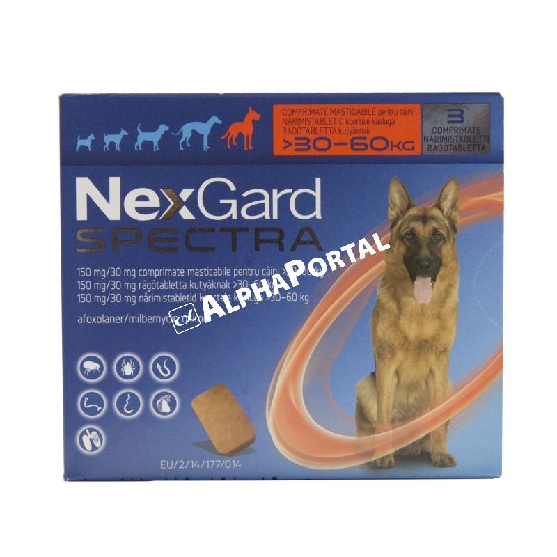 NexGard Spectra rágótabletta kutyáknak | Cédrus Patika